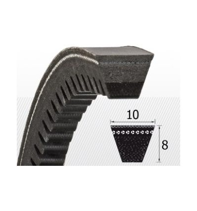 Ремень зубчатый AVX10