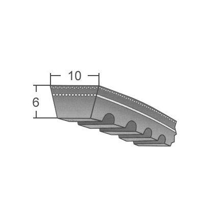 Ремінь  зубчастий   10/ZX